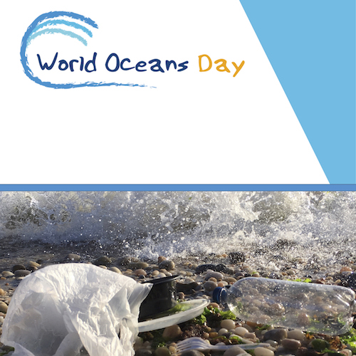Παγκόσμια Ημέρα Ωκεανών με δράση στα Λιοντάρια από τον Ε.Σ.Δ.Α.Κ. και το ΕΛ.ΚΕ.Θ.Ε.